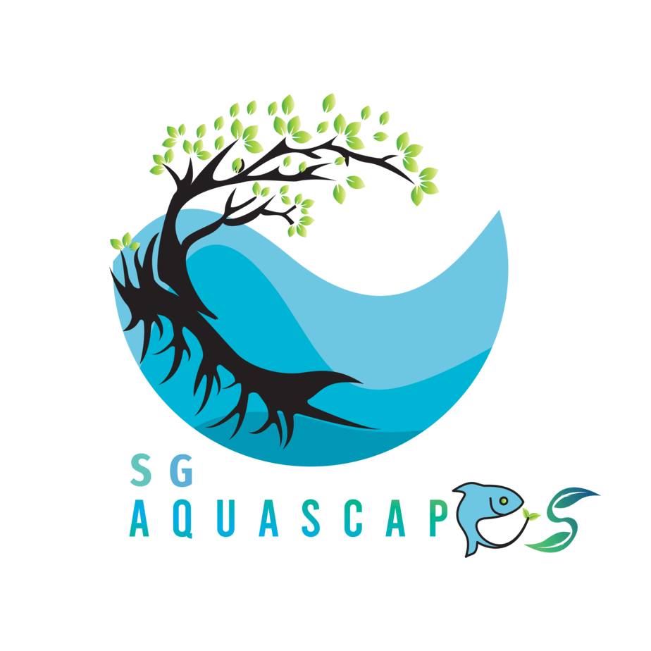 SG Aquascapes