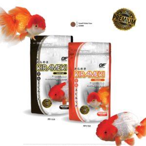 OF Oranda Goldfish Series